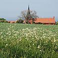 Svaneke Kirke_1510